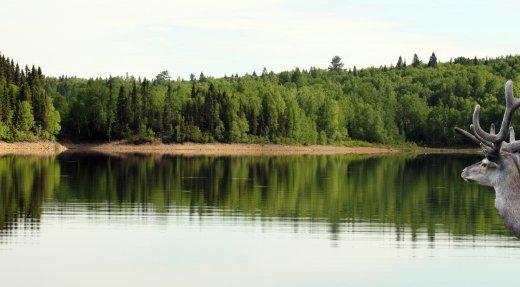 Le Programme Hydro-Québec verse plus de 500 000 $ pour des projets de mise en valeur des milieux naturels