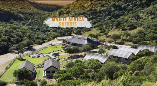 Joignez-vous à nous pour un safari en Afrique du Sud