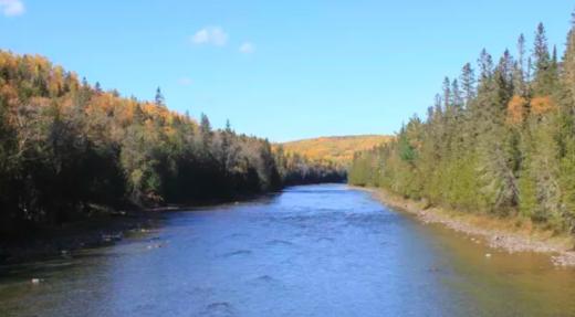 Cohabitation sur la rivière Bonaventure : au bénéfice de tous les usagers