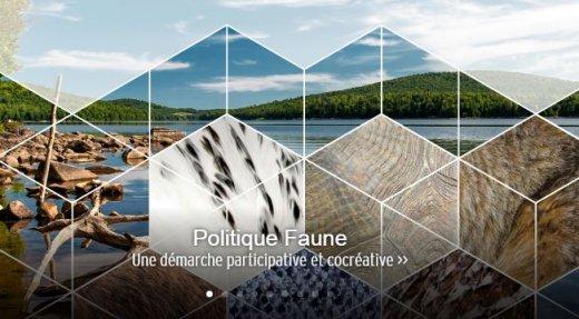 Donnez votre avis concernant la première politique gouvernementale sur la faune au Québec