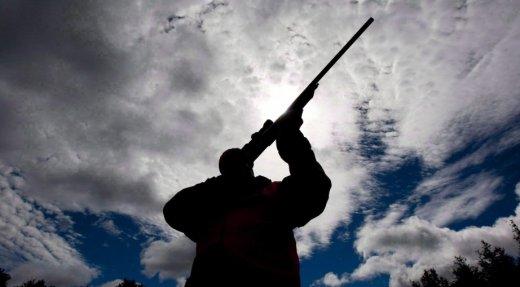 Québec refuse de bannir la chasse sur l'île de Montréal
