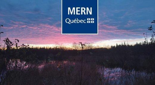 Terres du domaine de l'État – Le Gouvernement du Québec modifie le règlement en faveur des détenteurs de baux de villégiature