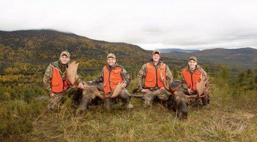 Chasses contingentées de l'orignal et du cerf de Virginie  dans les réserves fauniques et à Sépaq Anticosti