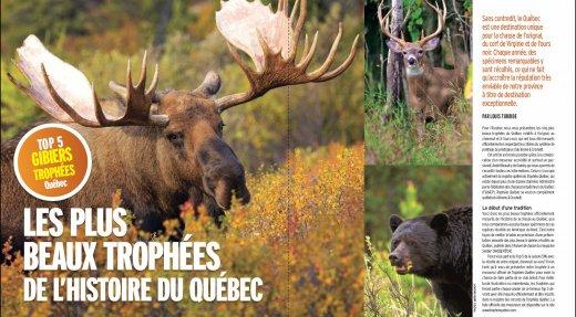 Découvrez les plus beaux trophées de l'histoire du Québec