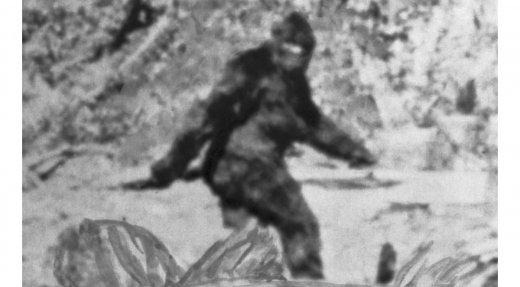 Une saison de chasse au Bigfoot