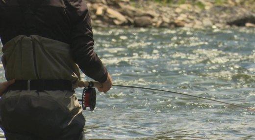 Pêche au saumon : les Québécois prennent le relais des Américains
