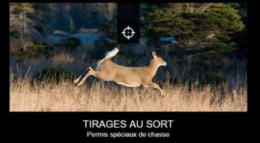 Tirage au sort-permis spéciaux de chasse