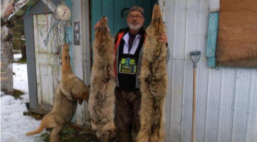 Un problème de coyotes - New Richmond