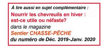 Chevreuil Armes L Efficacite Des Calibres Modestes Par Jeannot Ruel Articles Sur La Chasse Magazine Sentier Chasse Peche
